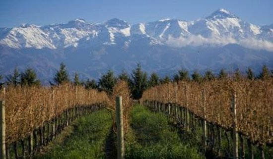Chacras de Coria - Where to stay in Mendoza, Argentina