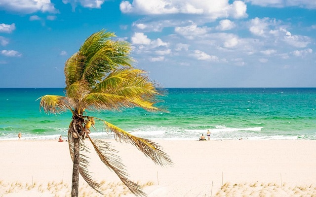 Where to stay in Fort Lauderdale - Fort Lauderdale Beach