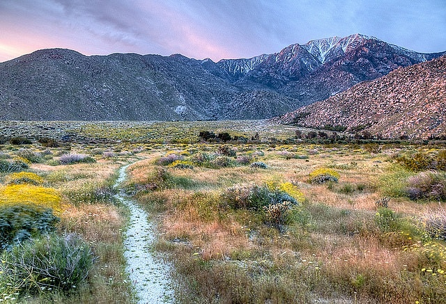 San Jacinto Mountain - Mejores zonas donde hospedarse en Coachella Valley & Palm Springs