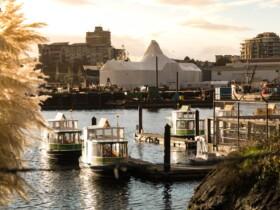 Las mejores zonas donde alojarse en Victoria, Canadá