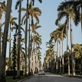 Las mejores zonas donde alojarse en Palm Beach, FL