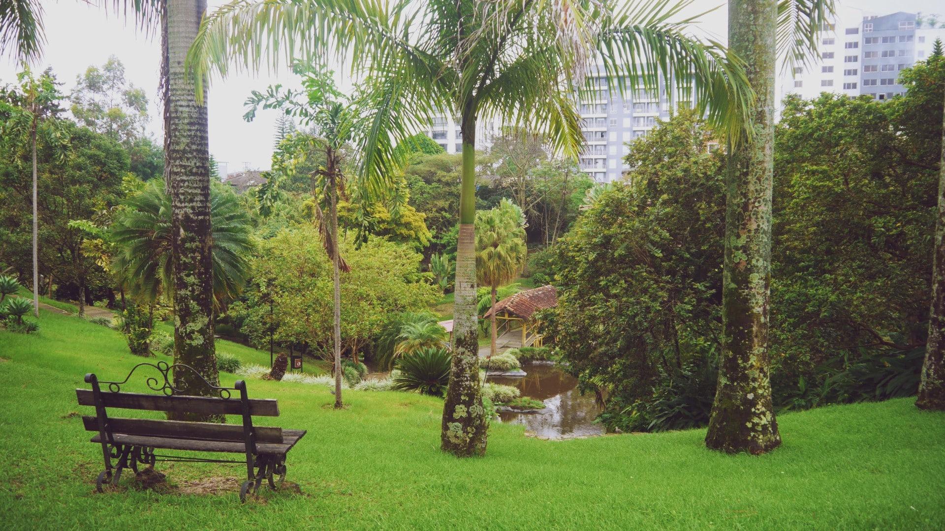 Las mejores zonas donde alojarse en Armenia, Colombia