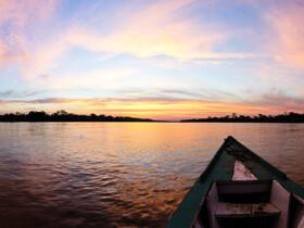 Dónde alojarse en Manaus, Brasil