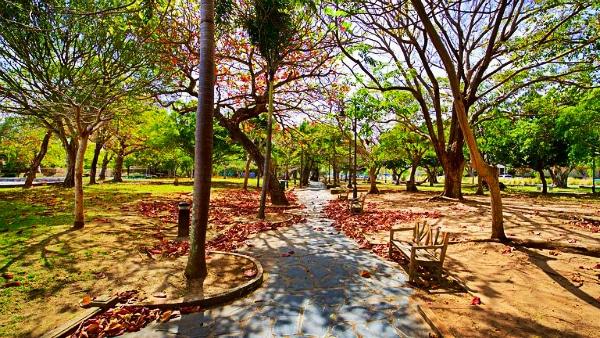 Where to stay in San Juan, Puerto Rico - Condado