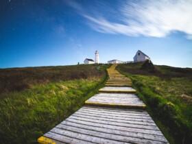 Las mejores zonas donde alojarse en St John's, Canadá